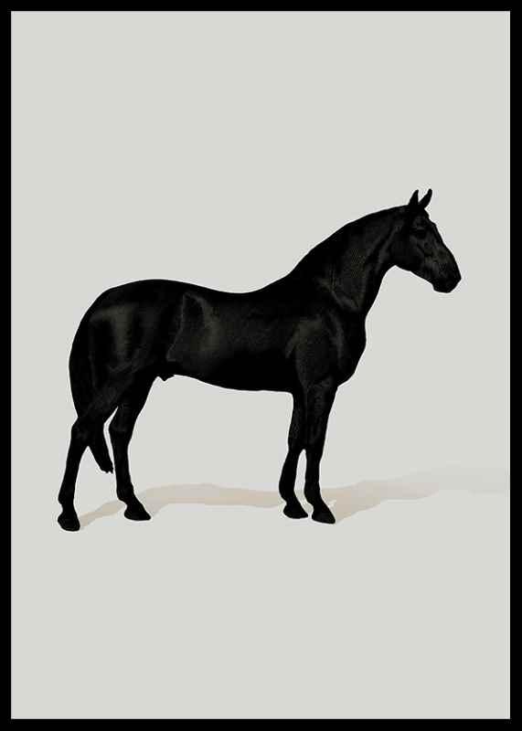 Black Horse Port. Drawing