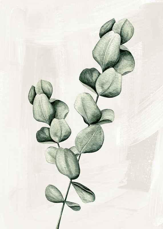 Eucalyptus Watercolor-3