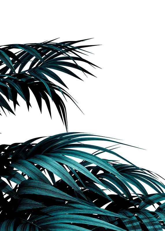 Palm Leaves Modern-3