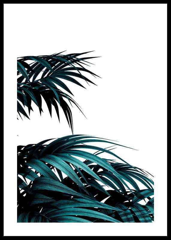 Palm Leaves Modern