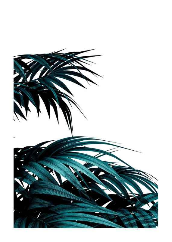 Palm Leaves Modern-1
