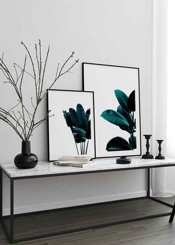 Rubber Plant Modern-4