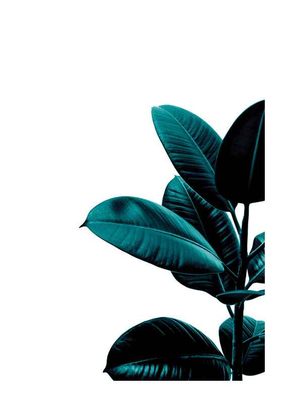 Rubber Plant Modern-1