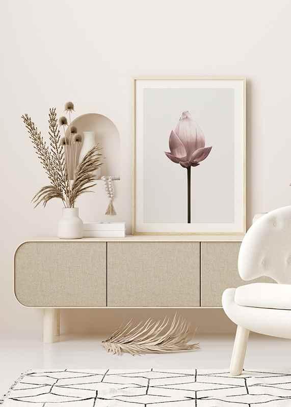 Lotus Flower-4