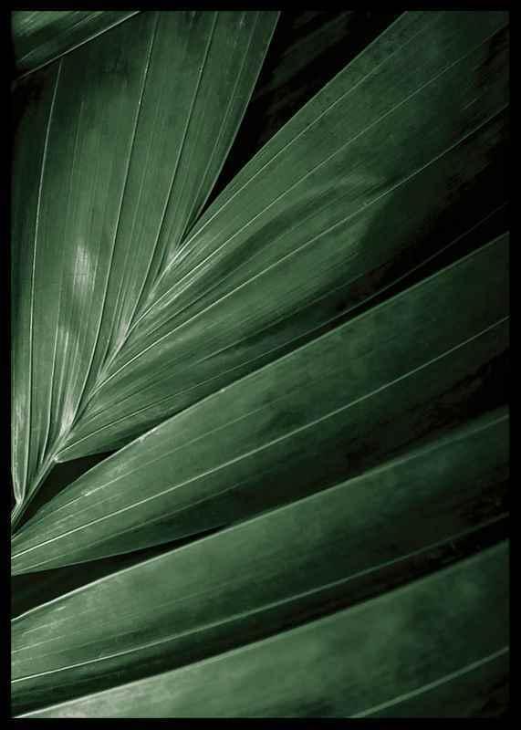Intense Green No2-2