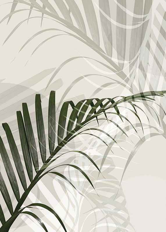 Abstract Palm Leaves No2-3