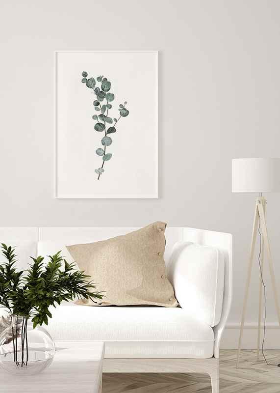 Eucalyptus No1-4