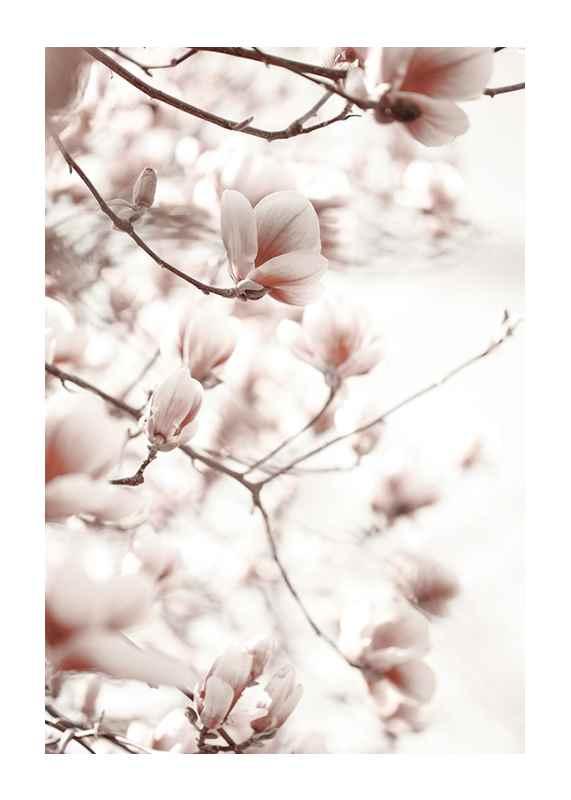 Pink Botanical Shades-1