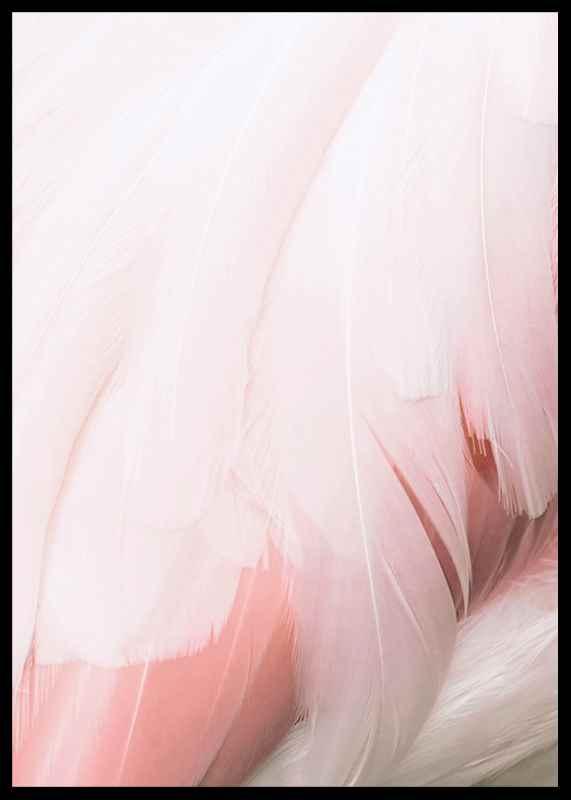 Flamingo Feathers-2