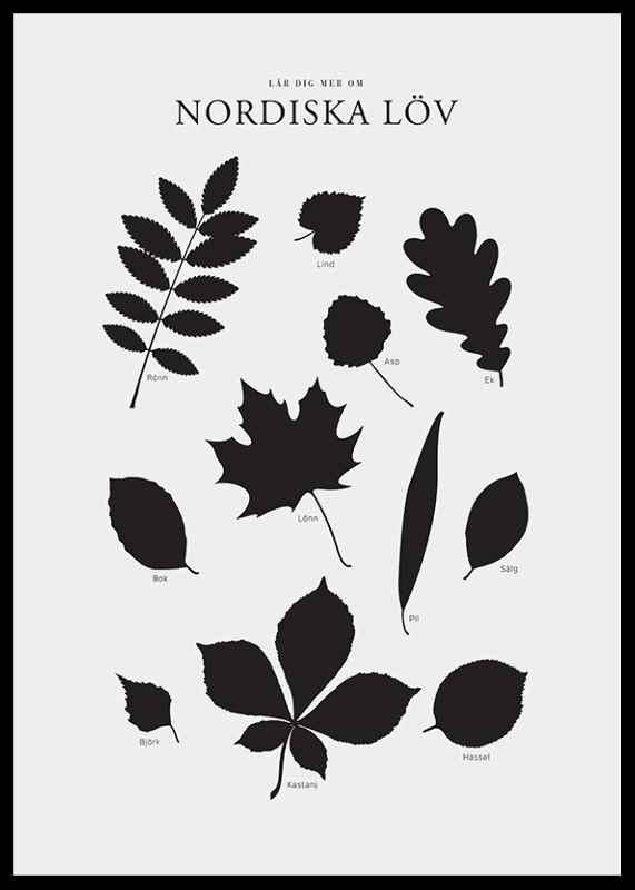 Nordiska Löv-2