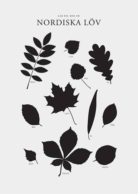 Nordiska Löv-3
