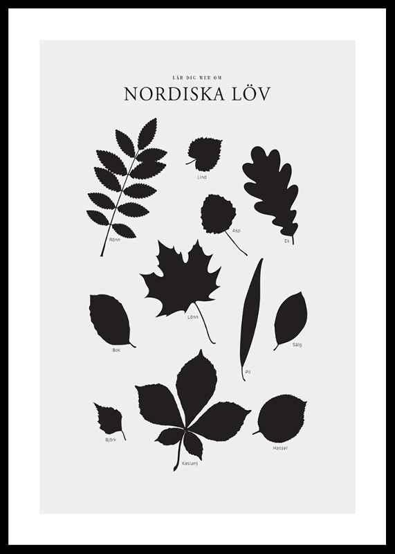 Nordiska Löv-0