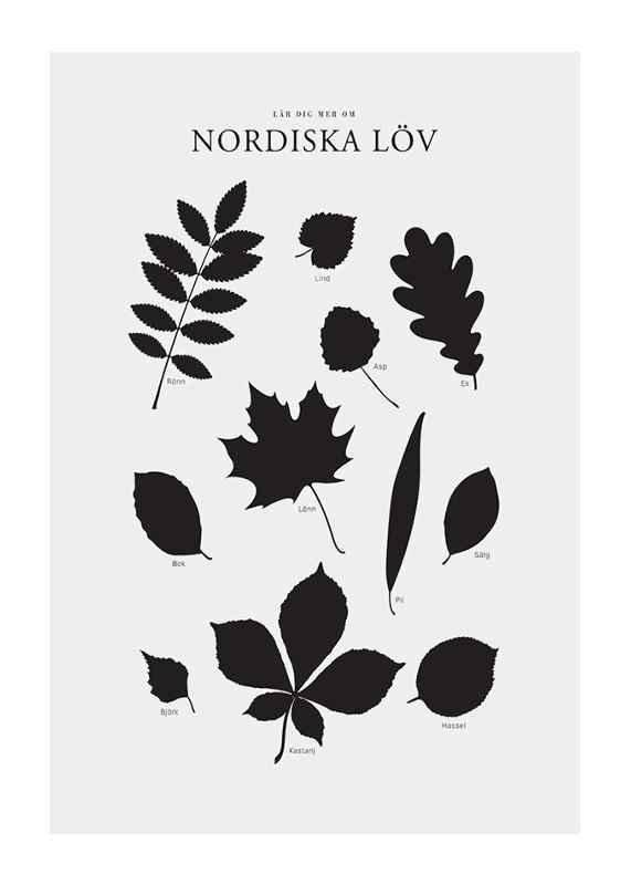Nordiska Löv-1