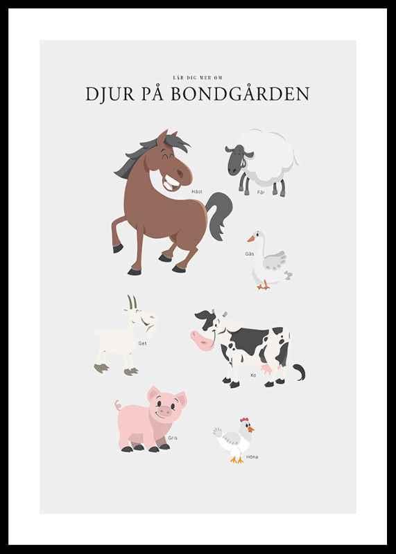 Djur På Bondgården-0