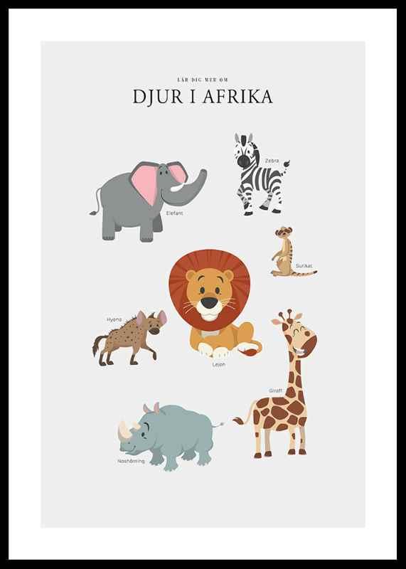 Djur I Afrika-0