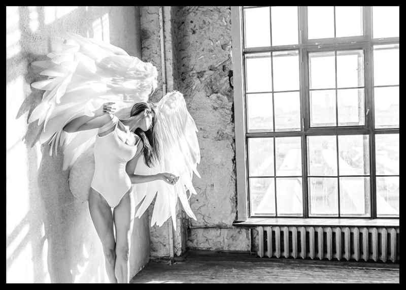 White Wings No2-2