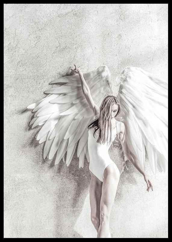 Angel Wings-2