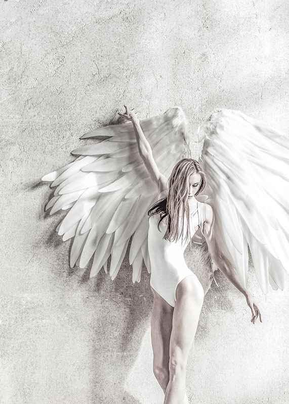 Angel Wings-3