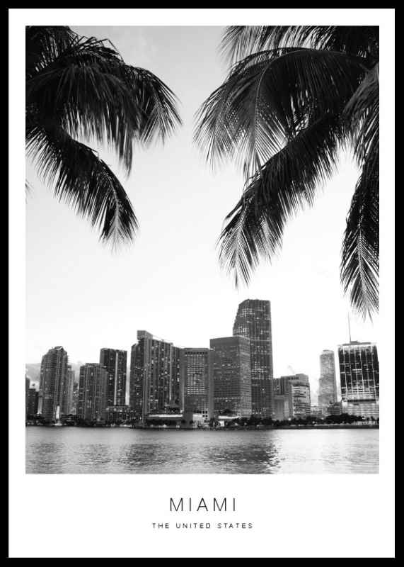 Miami-0