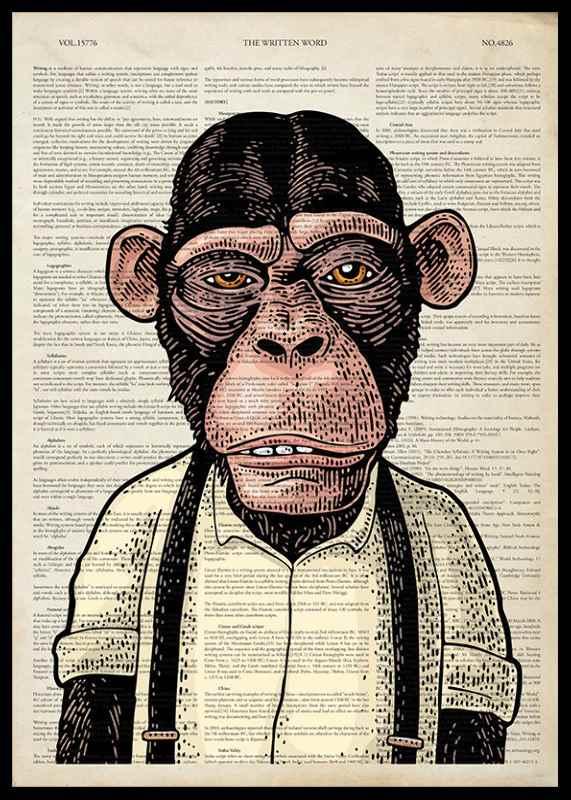 The Chimpanzee -0