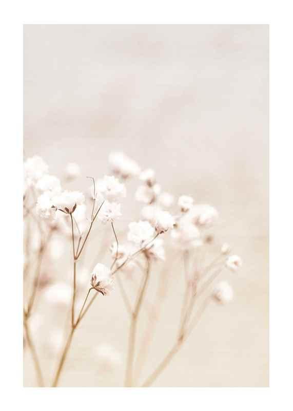Bright Flowers-1
