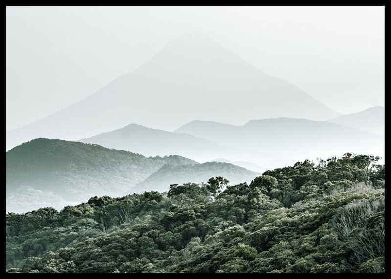 Mountain Forest-2