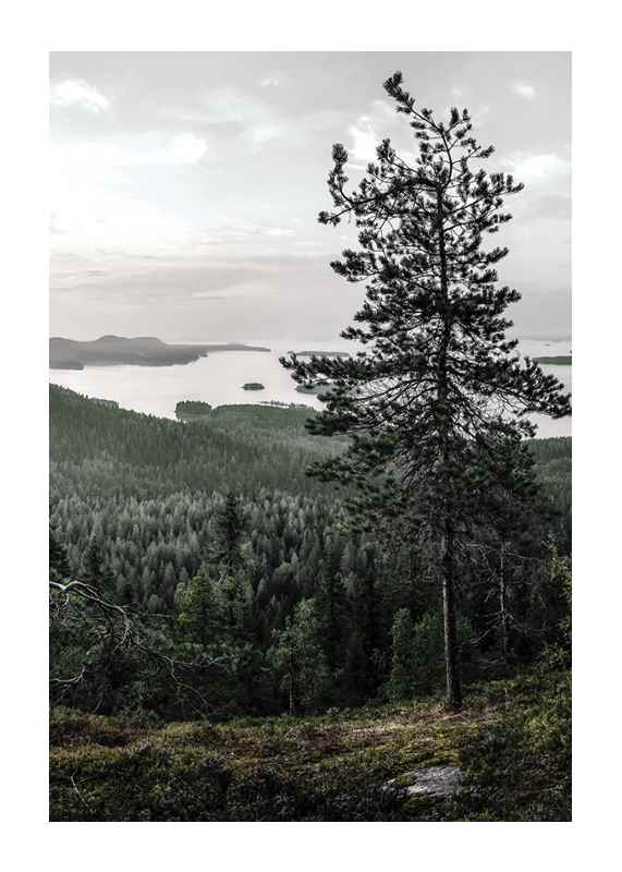 Nature By Finland-1