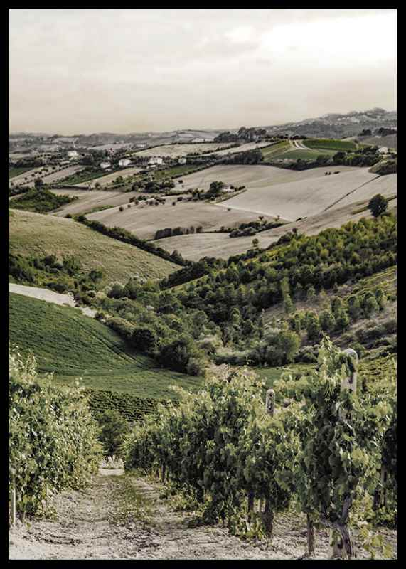 Gironde-2
