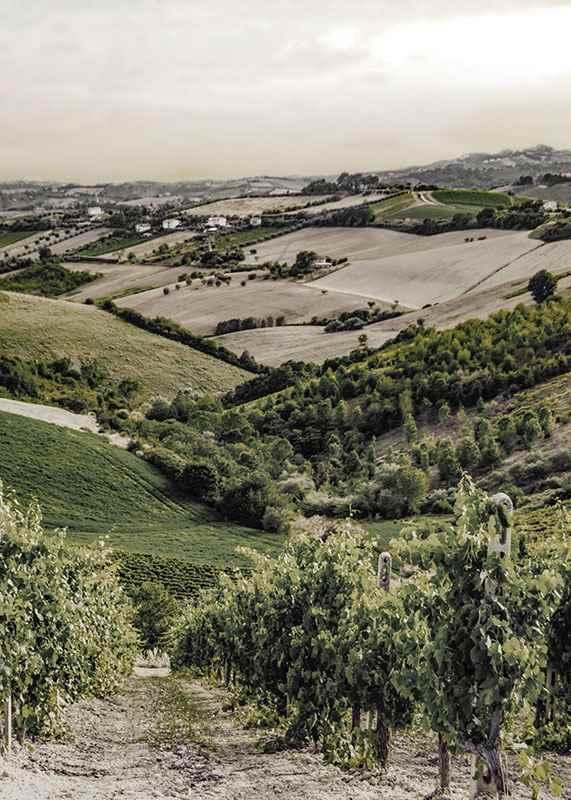 Gironde-3