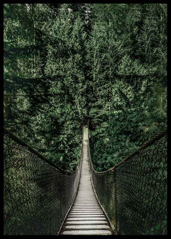 Escape Into The Forest-2