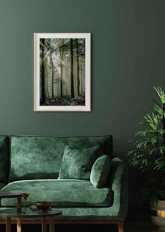 Light Through Trees-4