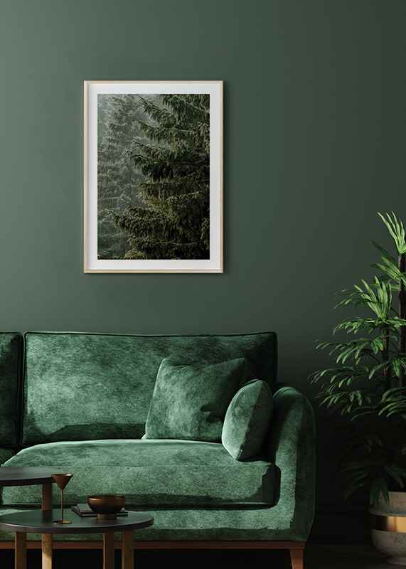 Spruce Trees-4