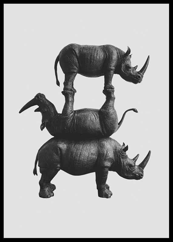 Three Rhinos-2