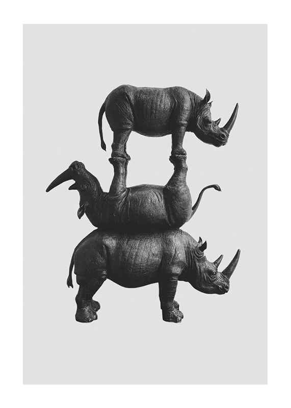 Three Rhinos-1