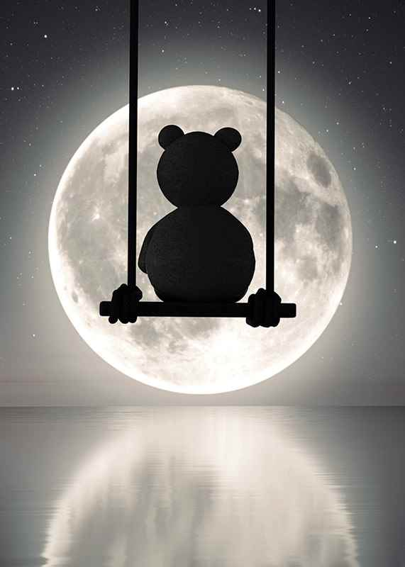 Teddy Moon-3