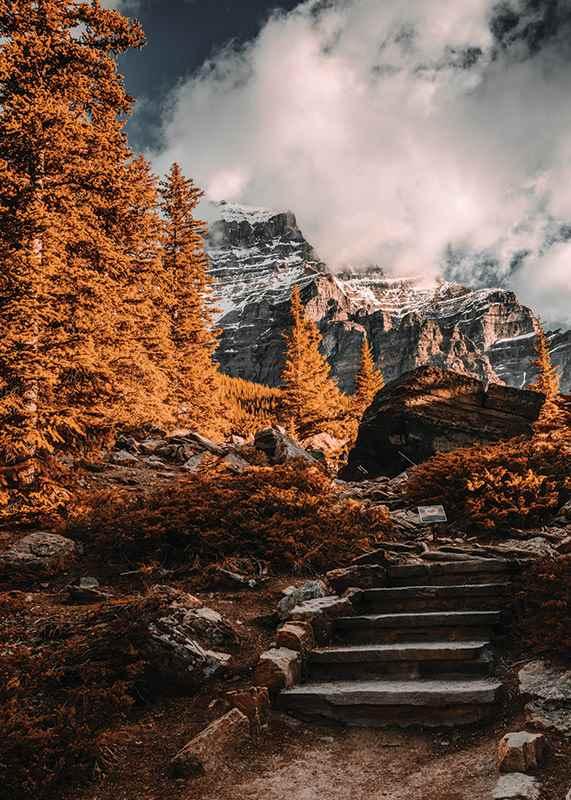 Autumn Wilderness-3
