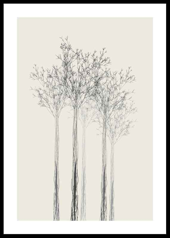 Sketched Trees-0