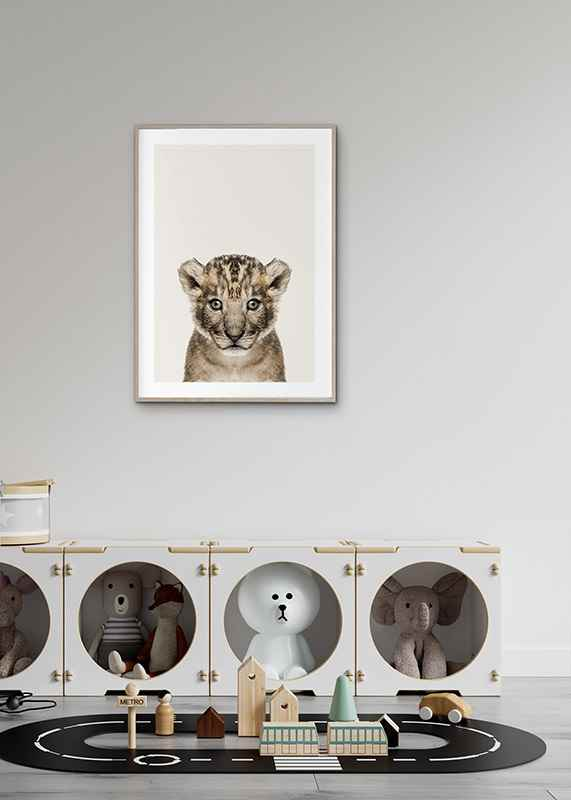 Baby Lion-4