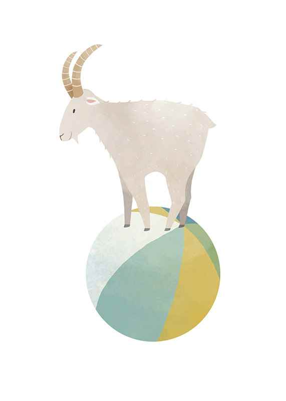 Playful Goat-1
