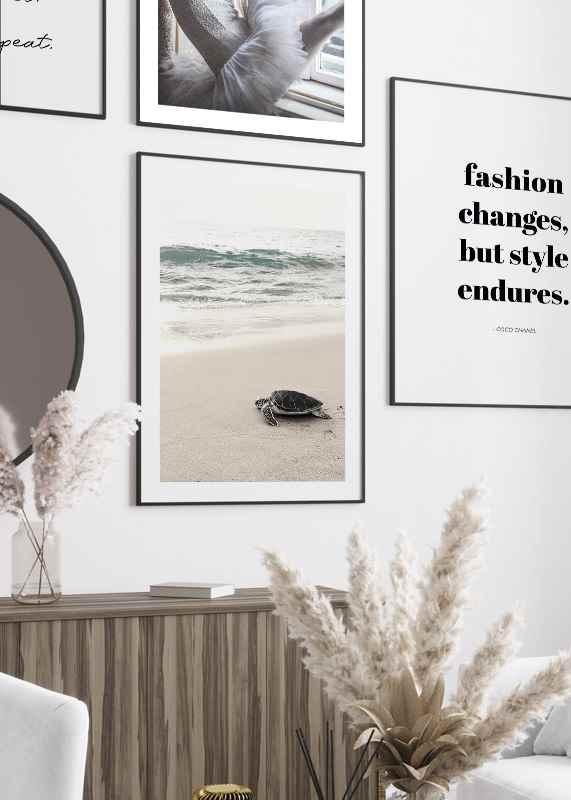 Sea Turtle On Beach-4