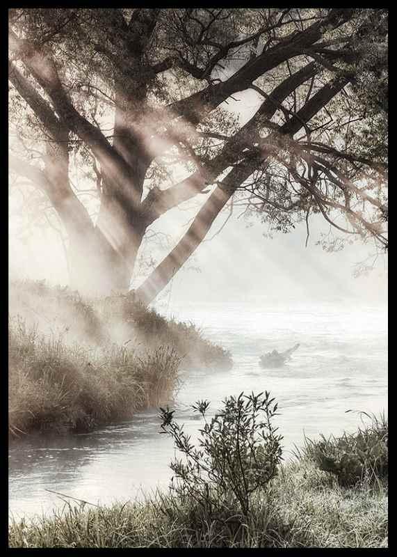 Foggy Dawn-2