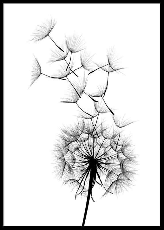 Dandelion Wish-2