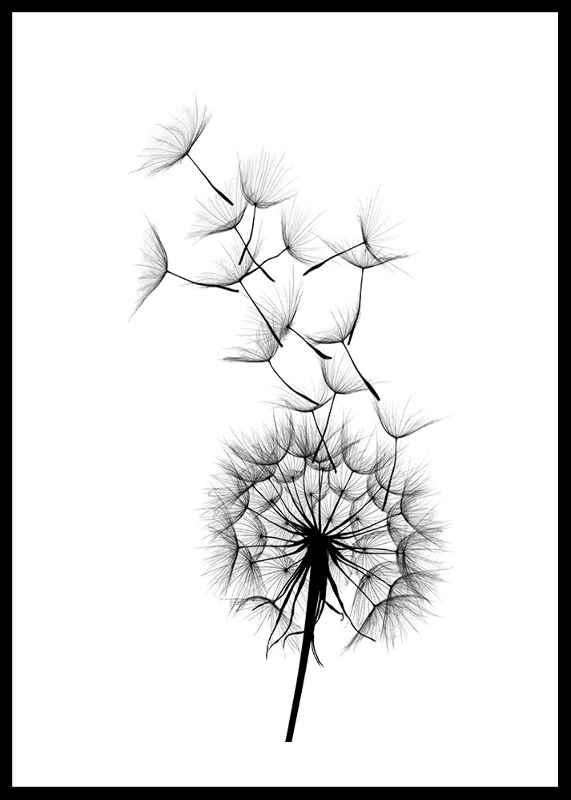 Dandelion Wish-0