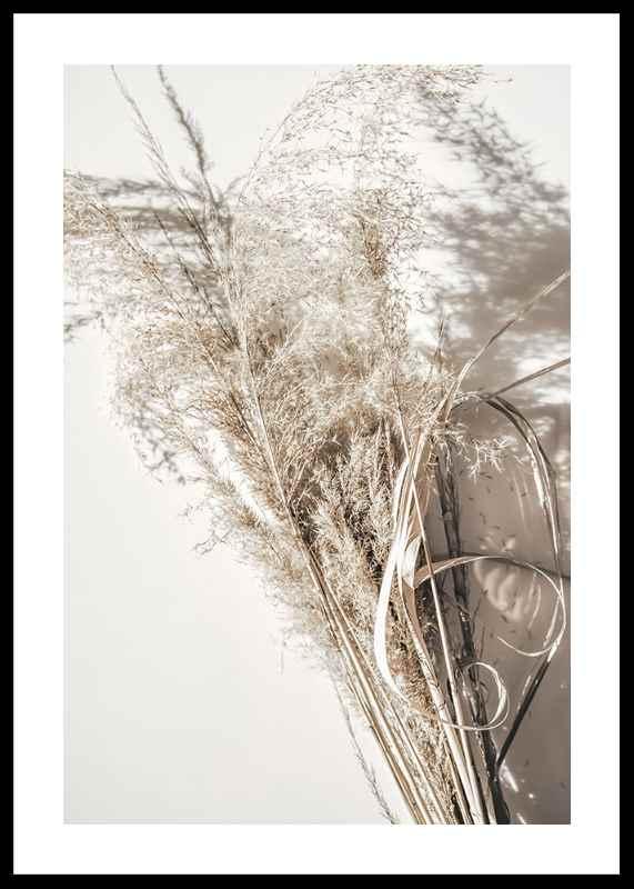 Dry Reeds No2
