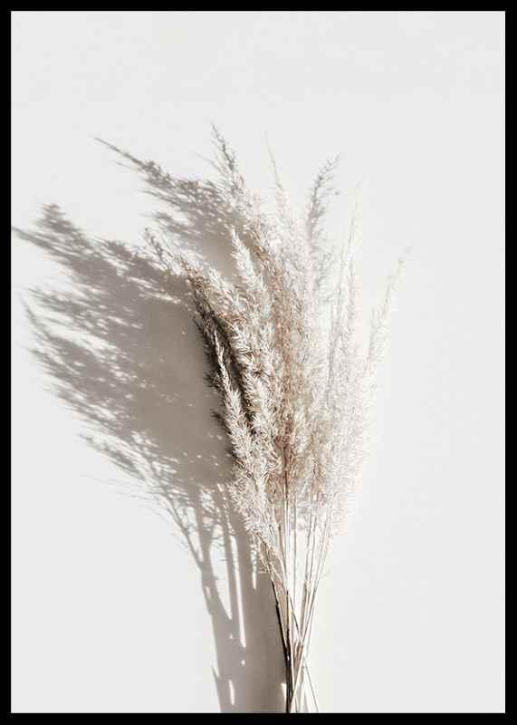 Dry Reeds No3-2