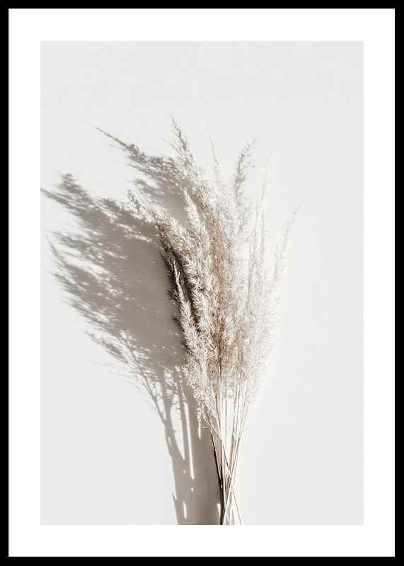 Dry Reeds No3-0
