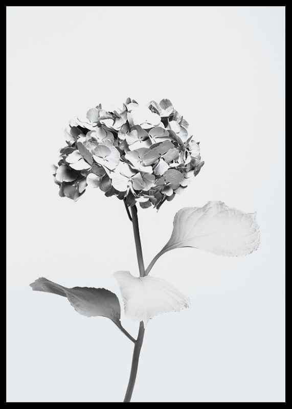 White Painted Flower-2