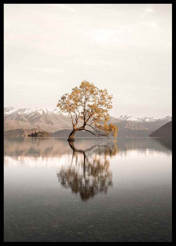 The Lonely Tree-2
