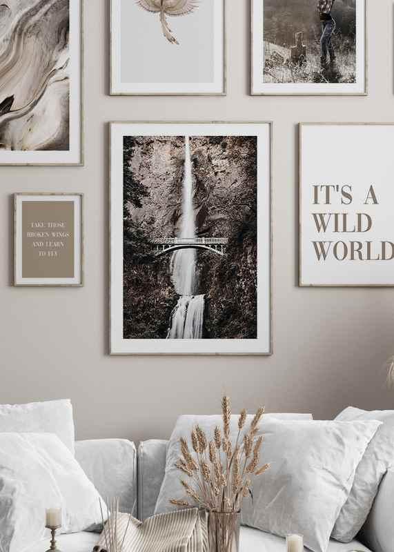 Wild World-2