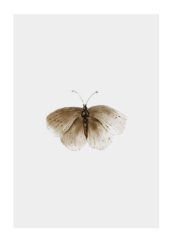 Watercolor Butterfly-1